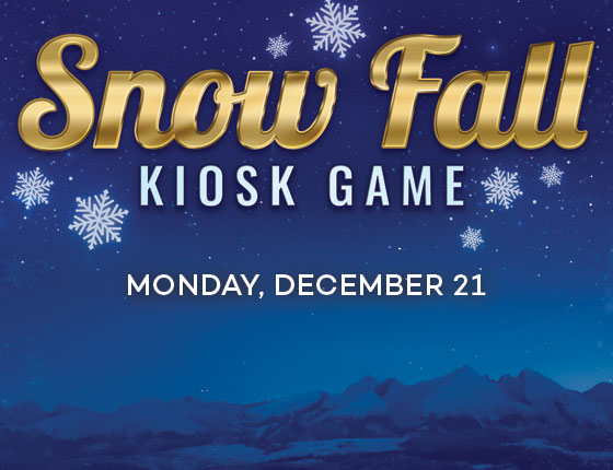 SNOW FALL KIOSK GAME